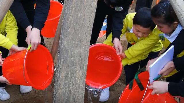 """沈阳市中小学""""我与小树共成长·百校万树""""主题教育活动启动仪式"""