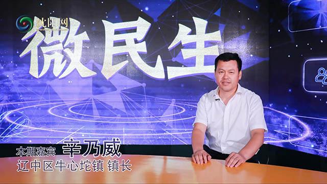 """""""辽宁特产寒富苹果之乡""""牛心坨镇发展的独到魅力"""